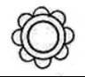 Individual Symbols - Copy (4)